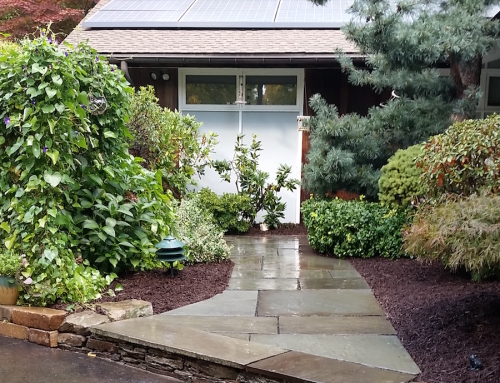 Bluestone Staircase By Landscape Solutions Amp Maintenance